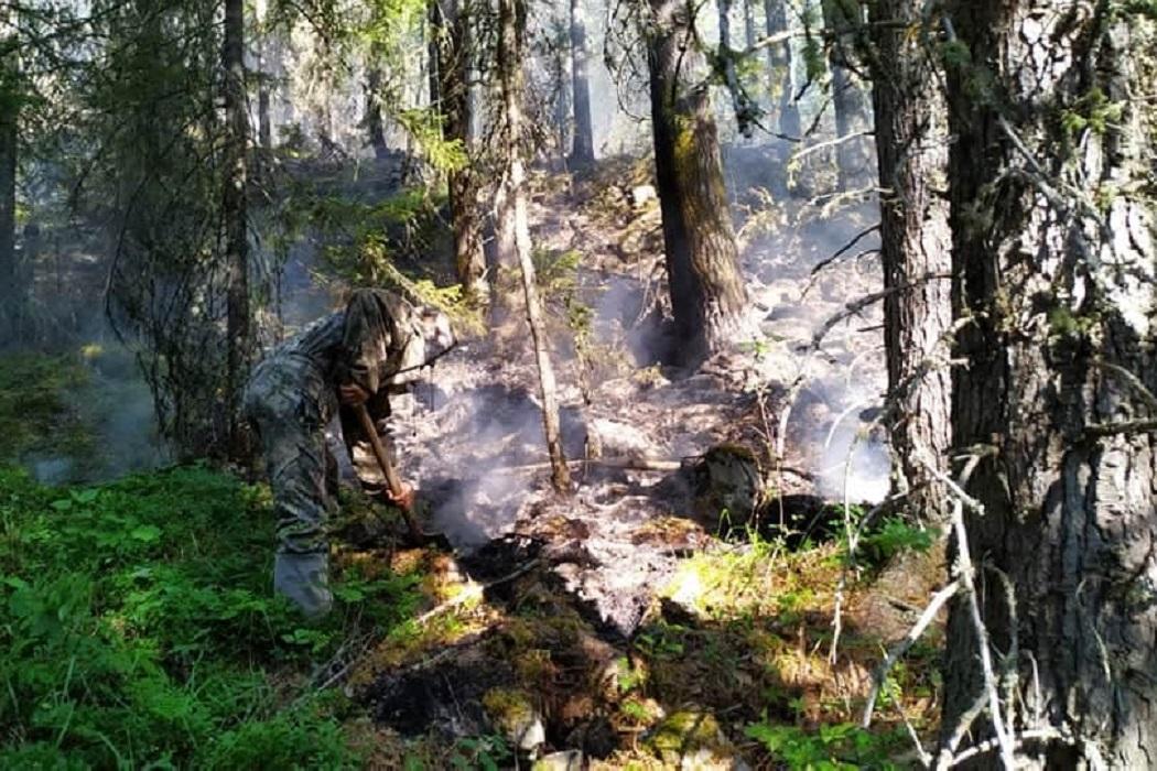 Появились фото пожара в заповеднике «Денежкин камень»