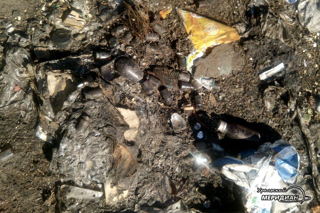 В Зауралье разыскивают организатора скотомогильника в лесу