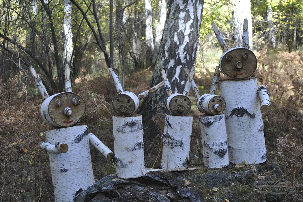 Экологическая тропа Зауральский лес (7)