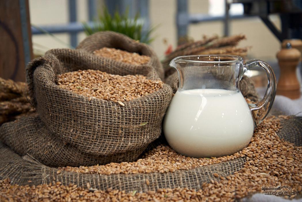 В Курганском молоке нашли кишечную палочку
