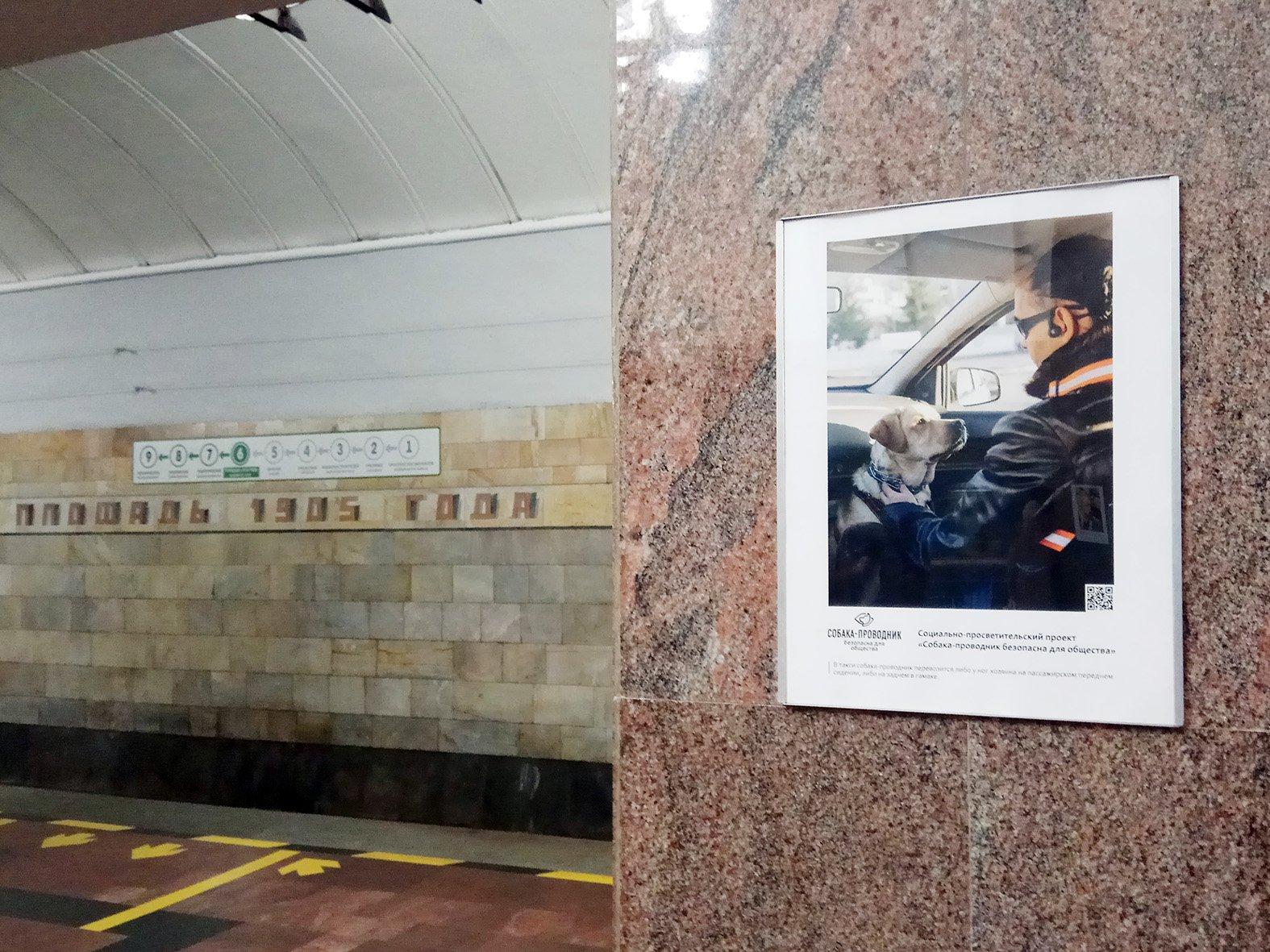 фотовыставка в метро о собаках-поводырях