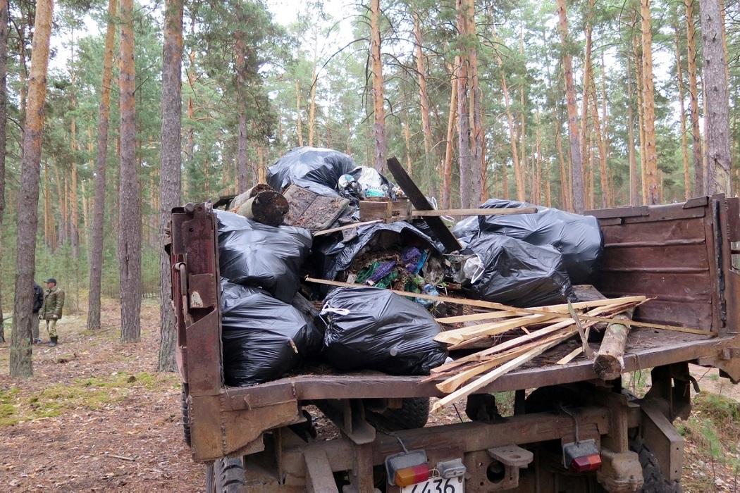 В зауральском лесу ликвидировали несанкционированную свалку