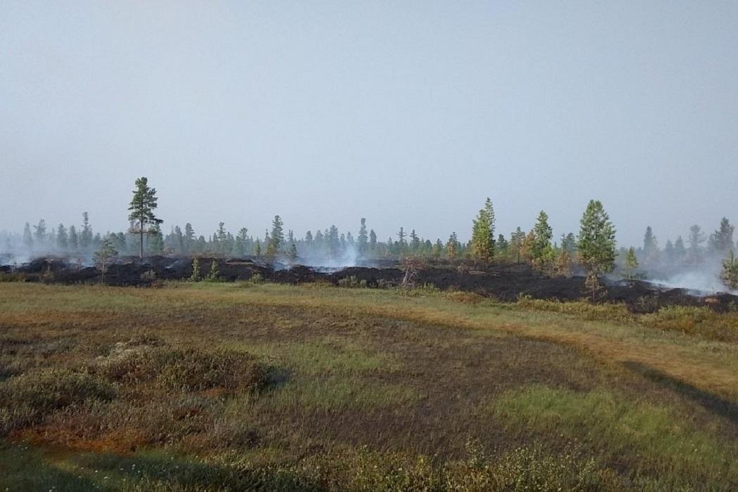 пожар Ноябрьск