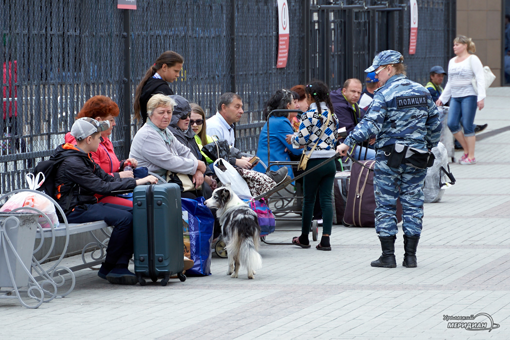 Кинолог МВД собака вокзал