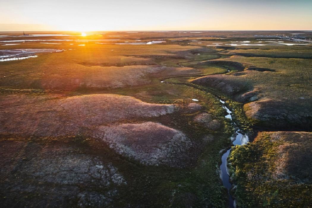 Нефтедобытчики восстанавливают земли исторического наследия в ЯНАО