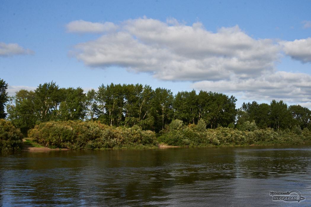 природа лето река