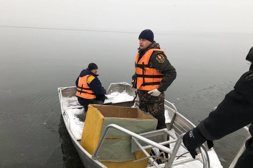 Одинокий лебедь, обнаруженный на озере Шарташ в Екатеринбурге, улетел