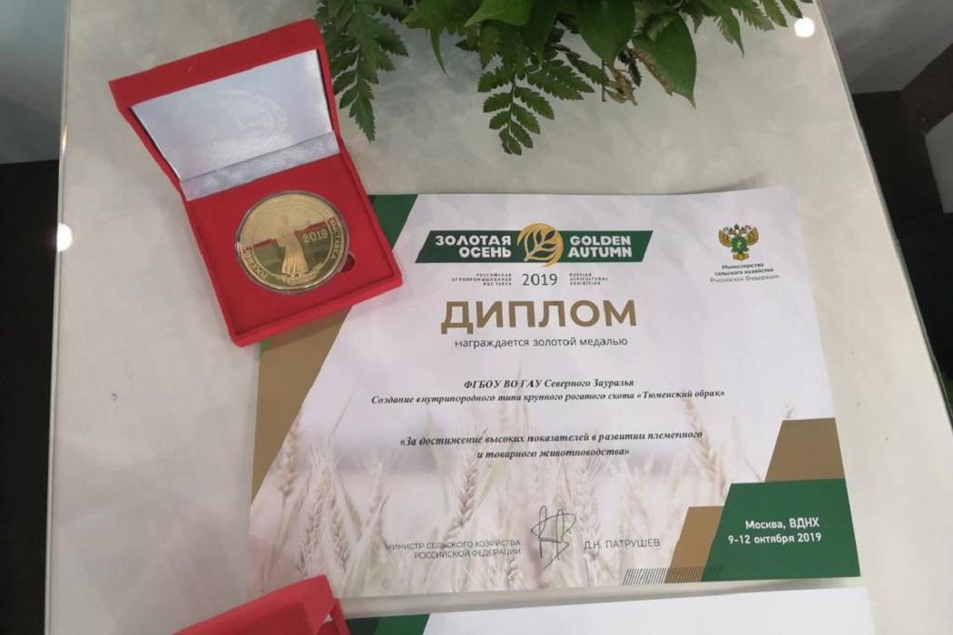 Диплом медаль