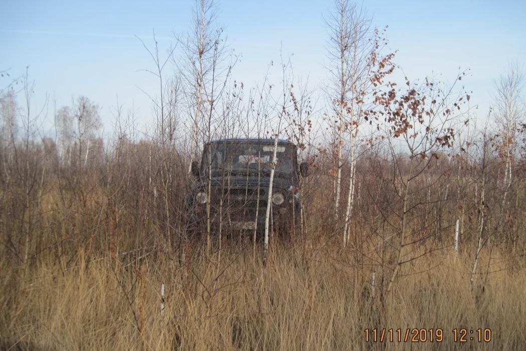 В Зауралье Россельхознадзор обнаружил потенциальную опасность для села