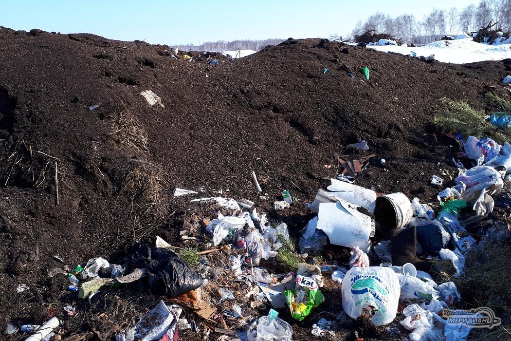 Отходы Кургансемена на свалке в с. Менщиково