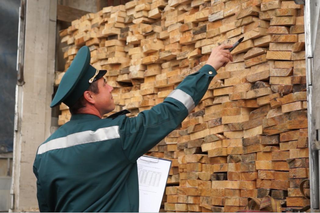 Тюменской таможней выявлена контрабанда леса стоимостью ₽8 млн