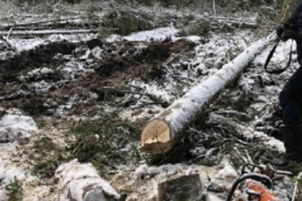 На месторождении в Уватском районе погиб рабочий