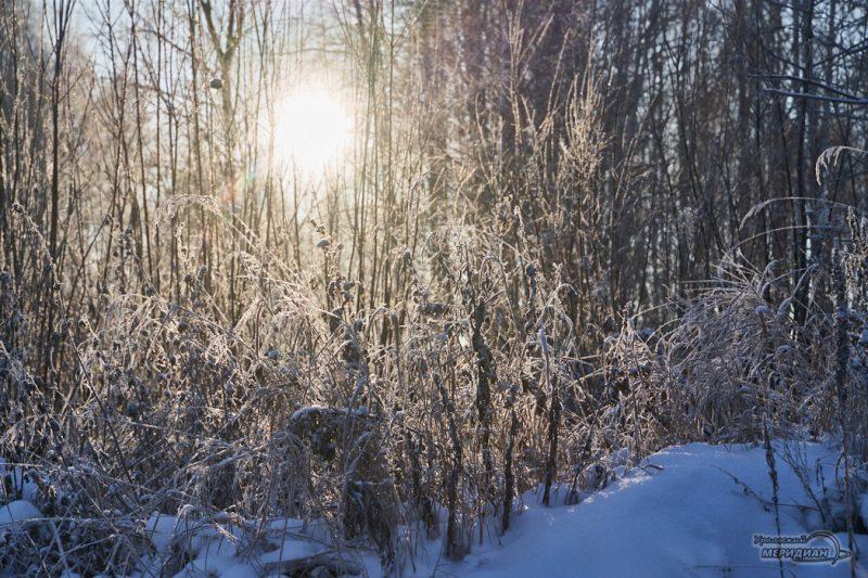 Зима снег мороз погода природа солнце