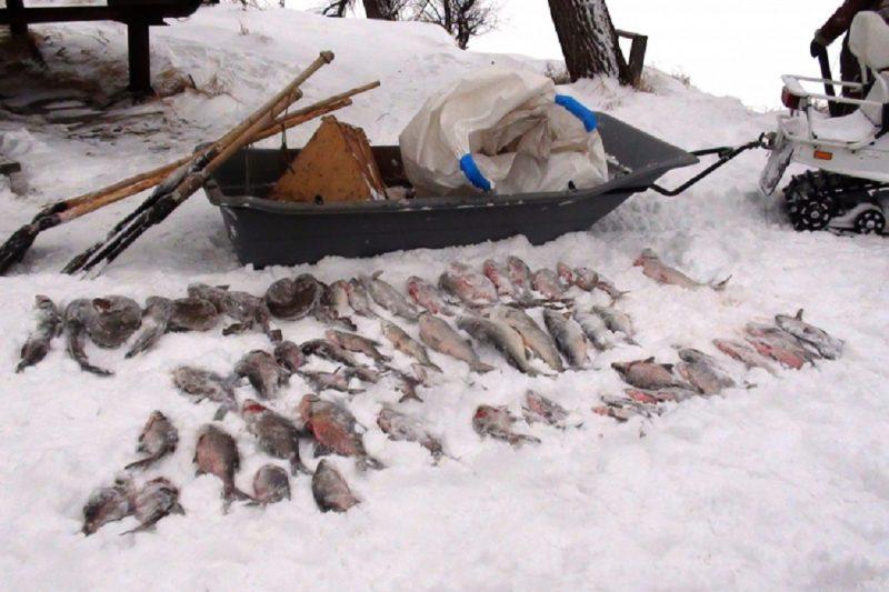 Двум тюменским браконьерам грозит срок за рыбалку в запретной зоне