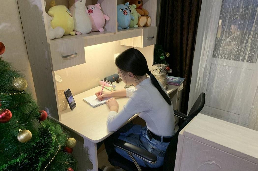 В Зауралье детям медиков с уроками помогают студенты и преподаватели