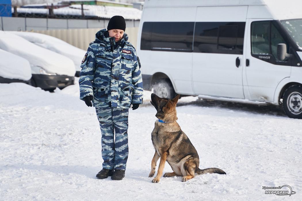 kinologicheskiy tsentr transportnaya politsiya ut mvd 06