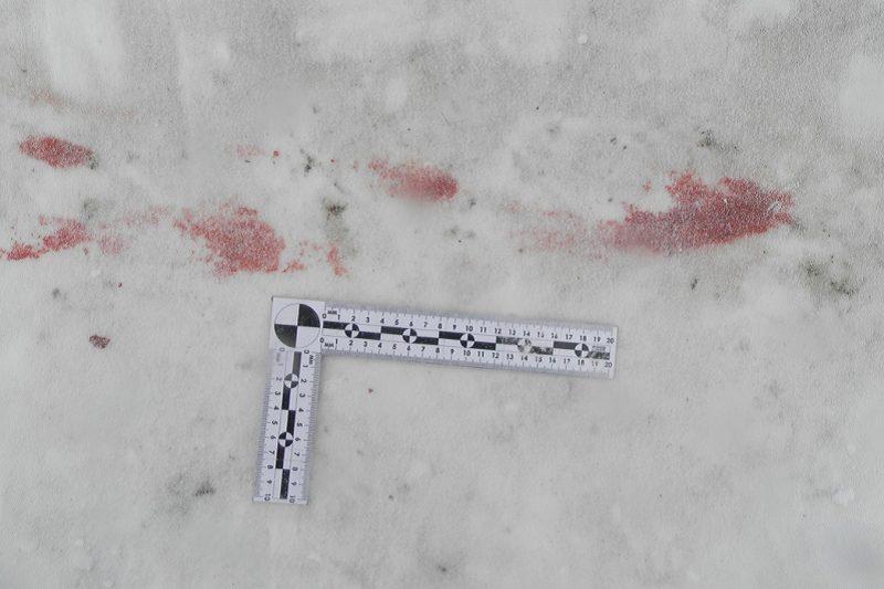Убийство + снег + место преступления