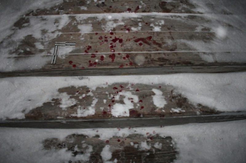 Кровь + убийство