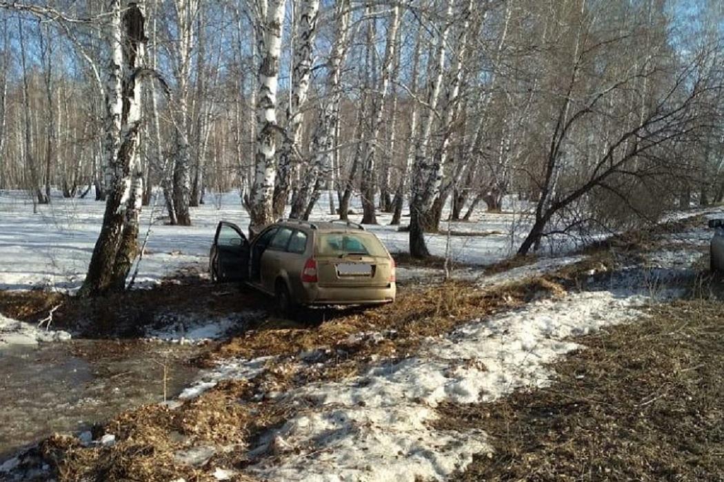 Машина врезалась в дерево + лес +берёзы