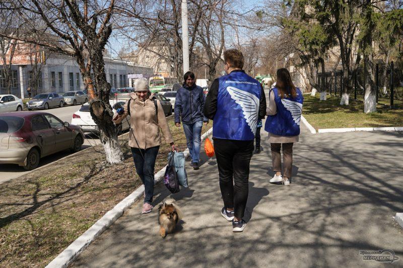 georgievskaya lentochka volontery den pobedy 19