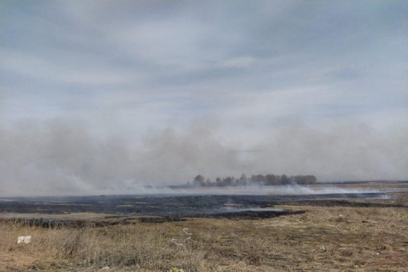 pozhar na polyah v Tyumenskoy oblasti