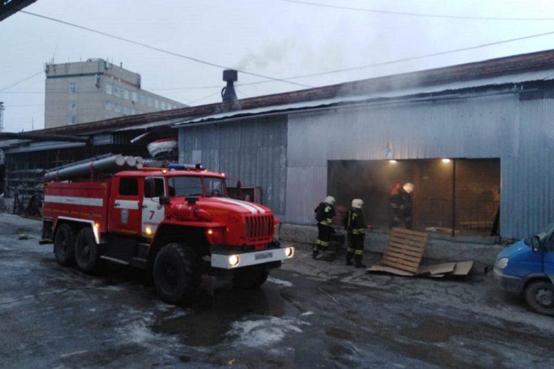 В Екатеринбурге погибли рептилии во время пожара на складе