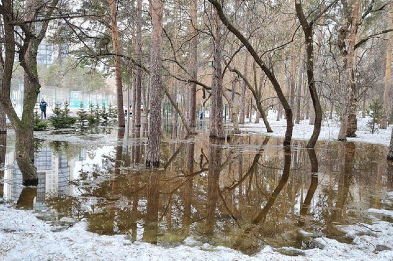 Вода затопила Зелёную рощу в Екатеринбурге