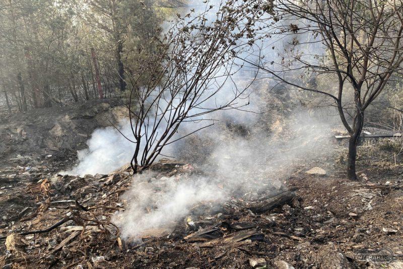 Тушение пожара в лесу тление