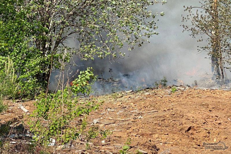 Пожар в лесу огонь дым