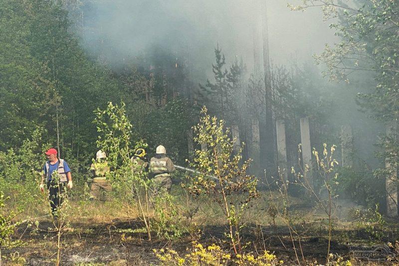 Тушение пожара в лесу мчс