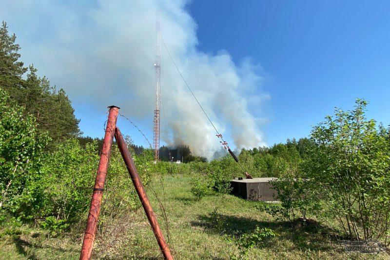 Лесной пожар вышка дым забор