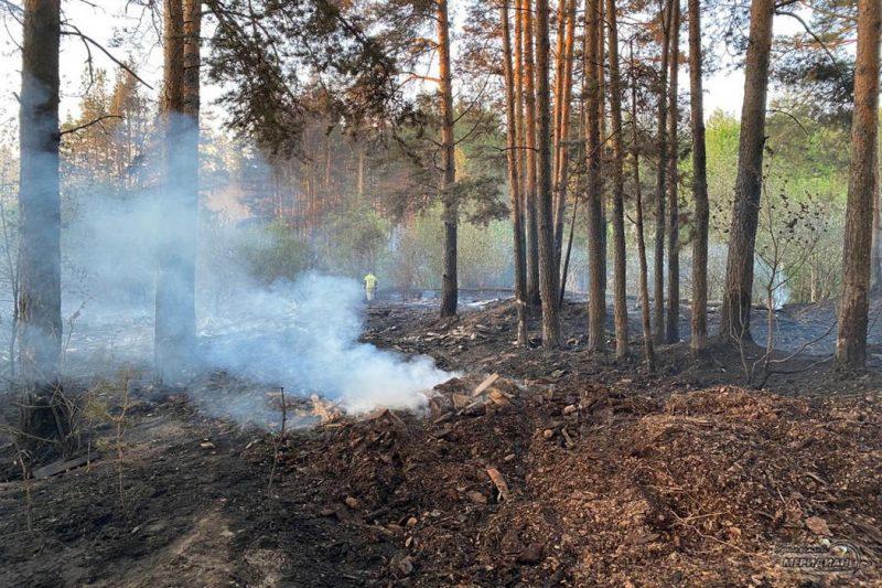 Лесной пожар дым тушение