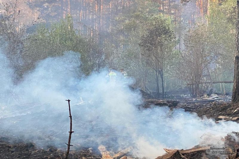 Пожар в лесу дым мчс гарь