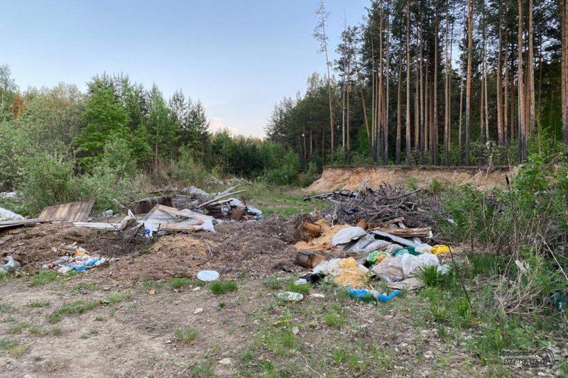 Свалка мусора в лесу ТКО