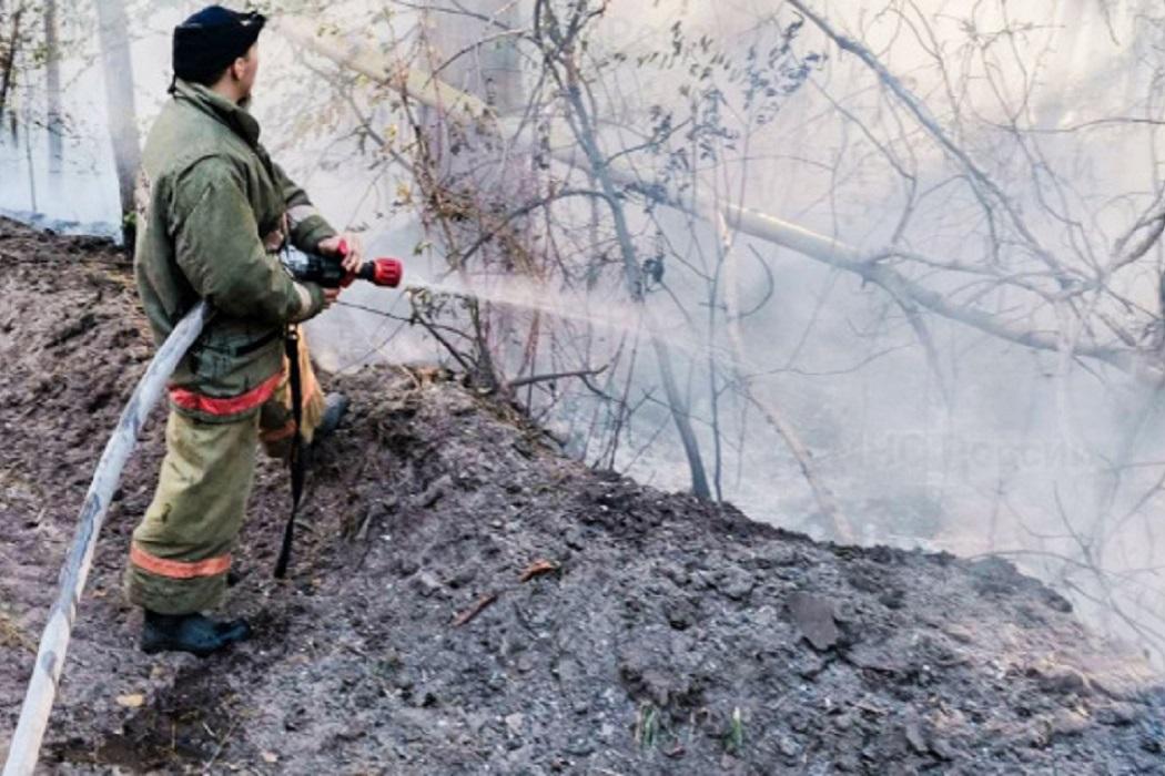Пожар + тушение пожара + пожарный + лес горит + пожарный рукав + пожарный шланг