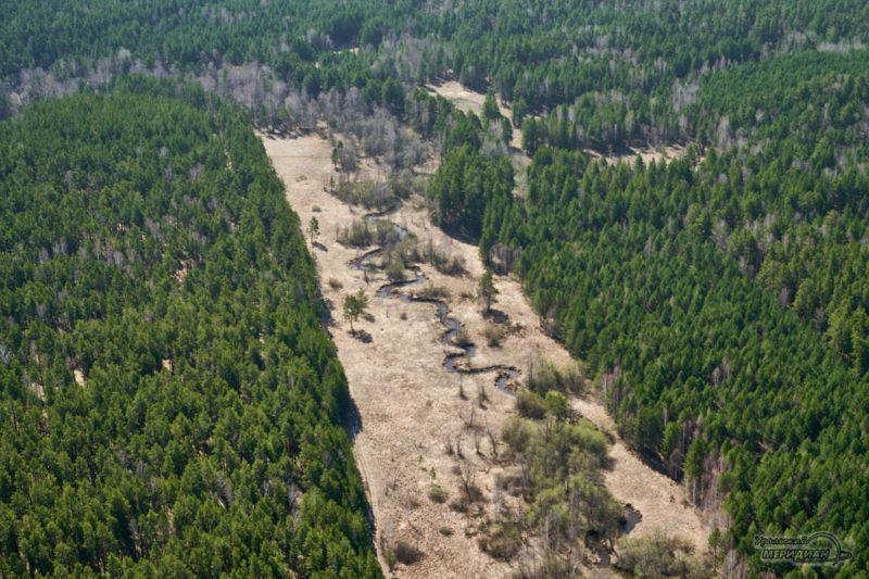 les reka priroda pogoda