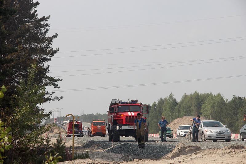 На тюменской трассе возник природный пожар 1