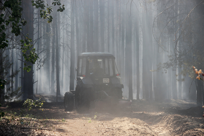 На тюменской трассе возник природный пожар 5