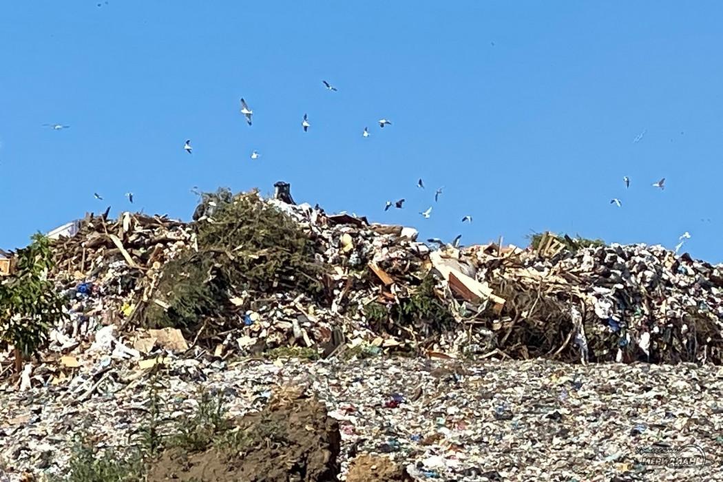 Коммунальные отходы на полигоне «Северный» разгружают на высоте 11 этажа
