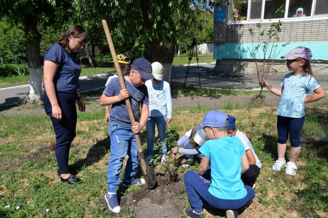 Посадка деревьев + высадка деревьев + саженцы + дети высаживают деревья