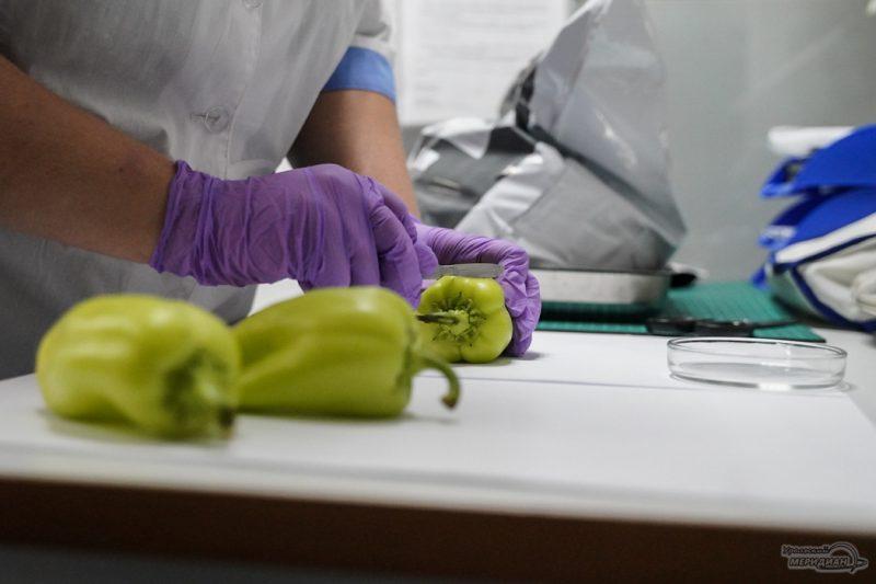 Tamozhnya Rosselhoznadzor laboratoriya ovoschi perets 18