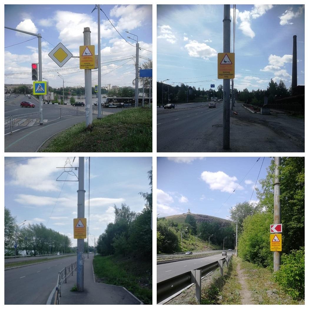 Дорожные знаки «Внимание, утки!» появились в Нижнем Тагиле