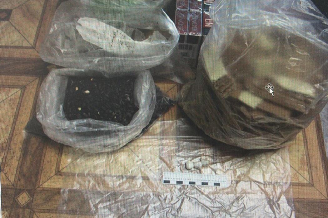 В ивдельскую колонию ИК-63 прислали героин в печенье