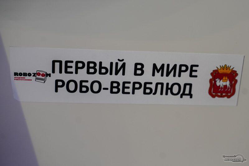 CHelyabinskaya oblast na INNOPROMe 3