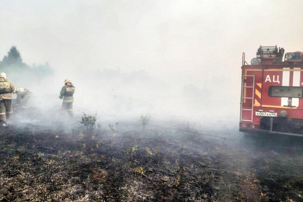 Пожар + дым + дымка + пожарная машина + пожарные + лес горит