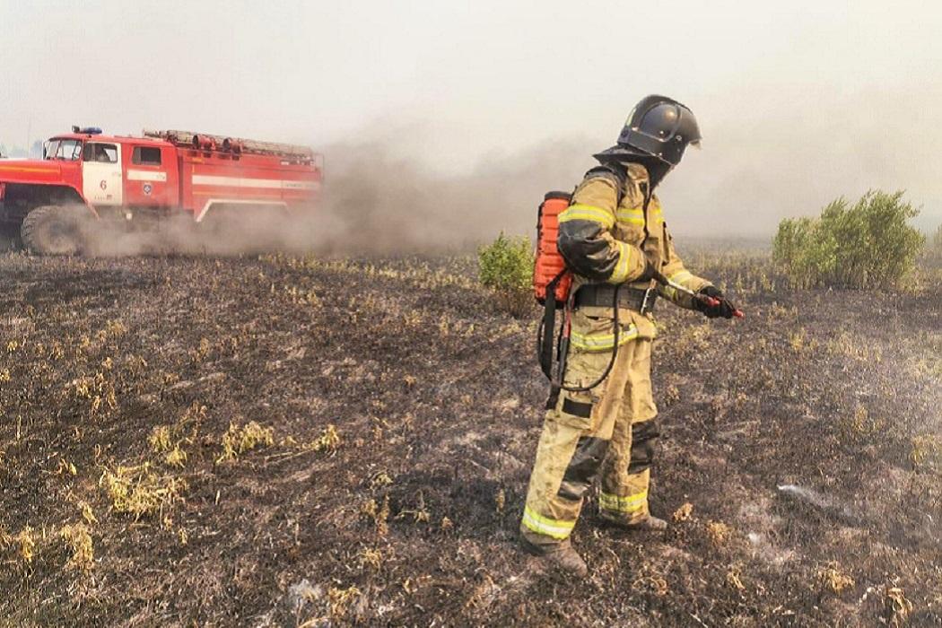 Пожар + пожарная машина + лес горит + дым + пожарный + тушение пожара