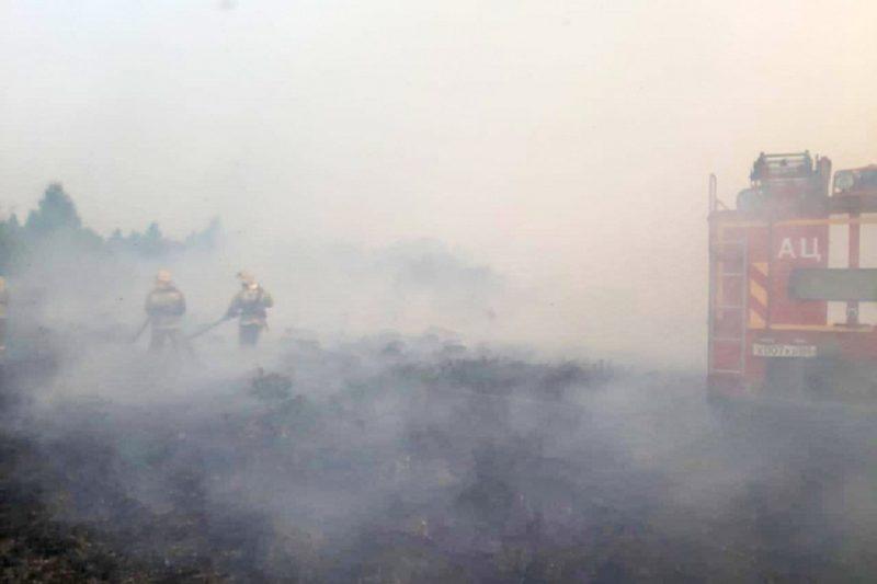 Пожар + пожарная техника + пожарные + тушение пожара + дым + гарь + природный пожар