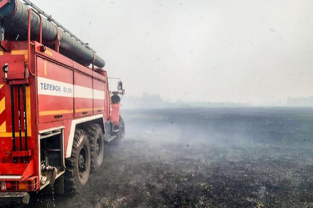 Пожарная машина + пожар + дым + лес горит