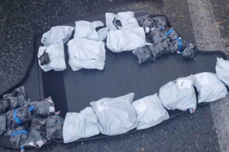 В Тюменской области задержали двух москвичей с более 20 кг наркотиков