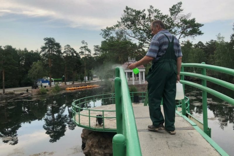 В челябинском парке Гагарина провели дезинфекцию аттракционов